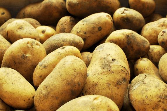 Pomme de terre charlotte (vapeur, risolé…)