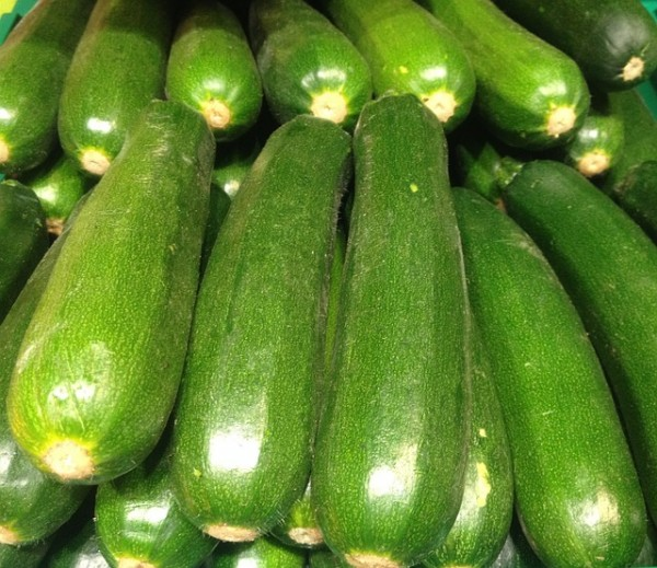 Courgette verte (France)