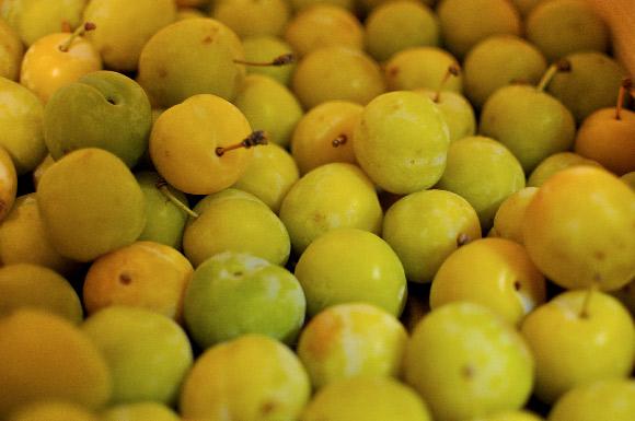 prune-jaune-d'oullin