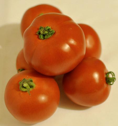 Tomate paola