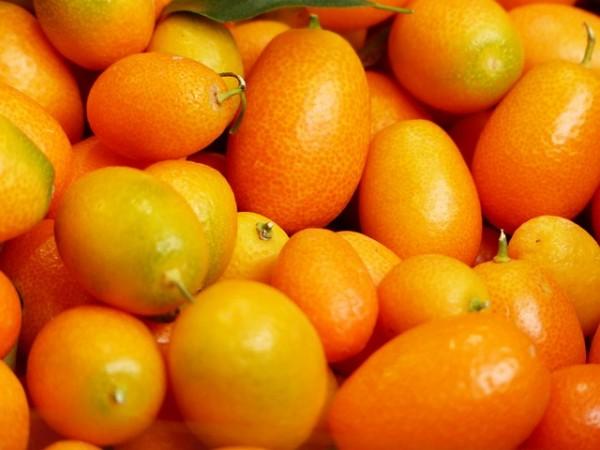Kumquat (italie)