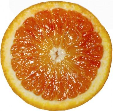 Orange demi-sanguine Tarocco (ITALIE)
