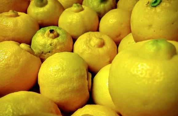 Citron bergamote «Gros» (Véritable d'Italie)