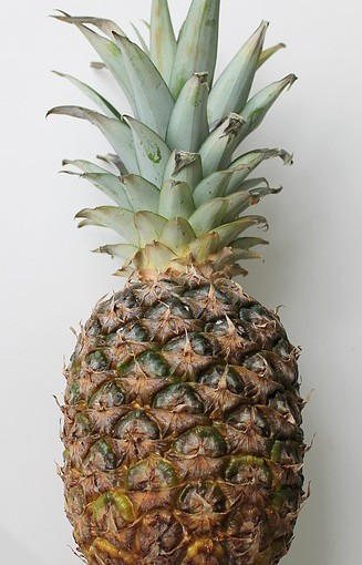 ananas extra sweet (env. 1 kg)