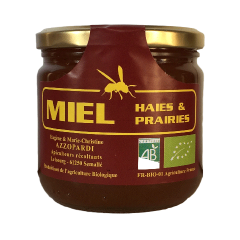 Miel de printemps  500g (local)