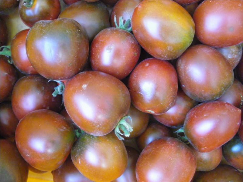 Tomate berao black